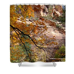 Fall Colors 6497 Shower Curtain by En-Chuen Soo