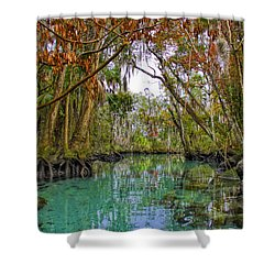 Fall Colors Along Three Sisters Spring Run Shower Curtain