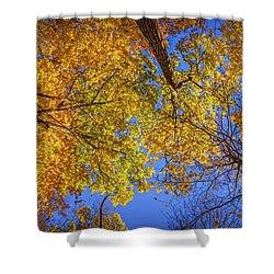 Fall Colors In The Sky  Shower Curtain by LeeAnn McLaneGoetz McLaneGoetzStudioLLCcom
