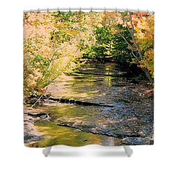 Fall Colors Shower Curtain by Kathleen Struckle
