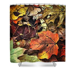 Fall Colors Shower Curtain by Lyle Hatch