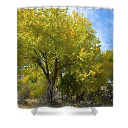 Fall Cottonwoods Shower Curtain by Dianne Phelps