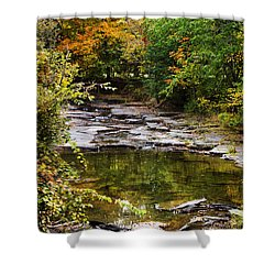 Fall Creek Shower Curtain by Christina Rollo