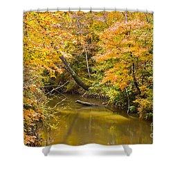 Fall Creek Foliage Shower Curtain