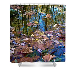 Fall Creek Shower Curtain by Pamela Clements