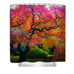Fall Crowning Glory  Shower Curtain