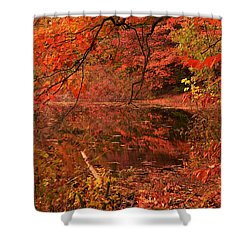 Fall Flavor Shower Curtain by Lourry Legarde