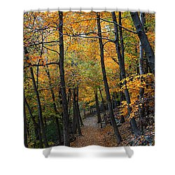 Fall Foliage Colors 03 Shower Curtain