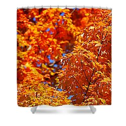 Fall Foliage Colors 17 Shower Curtain