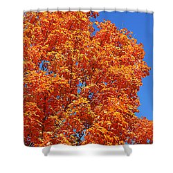 Fall Foliage Colors 18 Shower Curtain
