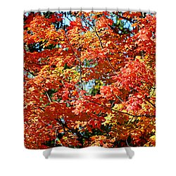 Fall Foliage Colors 22 Shower Curtain