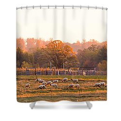 Fall Graze Shower Curtain