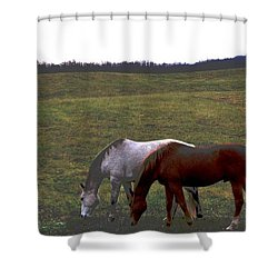 Shower Curtain featuring the photograph Fall Grazing by Carlee Ojeda