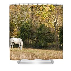 Fall Grazing Shower Curtain