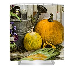 Fall Harvest Shower Curtain by Heather Applegate