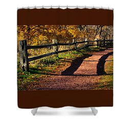 Fall In Chicago Shower Curtain