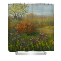 Fall In New England Shower Curtain by Pamela Allegretto