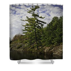 Fall In Northern Ontario Shower Curtain