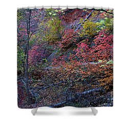 Shower Curtain featuring the photograph Fall In Sedona by Ruth Jolly