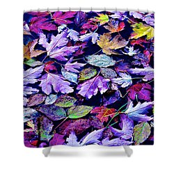 Fall In The Lake Shower Curtain by Rita Mueller