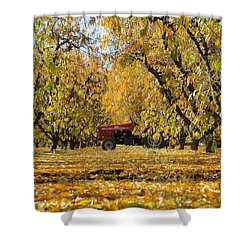 Fall In The Peach Orchard Shower Curtain