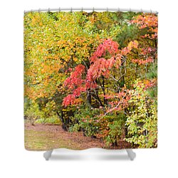 Fall Landscape 3 Shower Curtain by Lanjee Chee