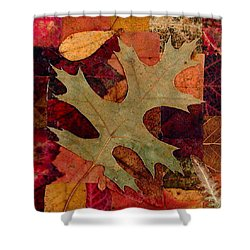 Shower Curtain featuring the mixed media Fall Leaf Collage by Anna Ruzsan