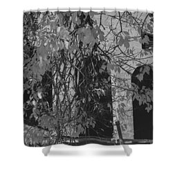 Fall Leaves On Open Windows Jerome Balck And White Shower Curtain