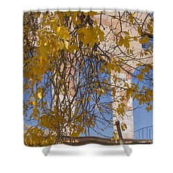 Fall Leaves On Open Windows Jerome Shower Curtain by Scott Campbell