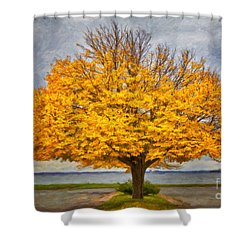 Fall Linden Shower Curtain by Verena Matthew