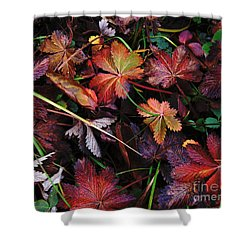 Fall Mix Shower Curtain by Janice Westerberg