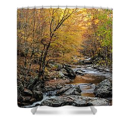 Shower Curtain featuring the photograph Fall Mountain Stream by Debbie Green