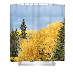 Fall Near Ya Ha Tinda Shower Curtain