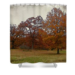 Fall On Antioch Road Shower Curtain