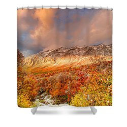 Fall On Display Shower Curtain