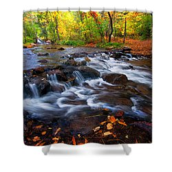 Shower Curtain featuring the photograph Fall On Fountain Creek by Ronda Kimbrow