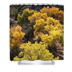Shower Curtain featuring the photograph Fall On The Chama River by Roselynne Broussard