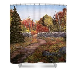 Shower Curtain featuring the painting Fall Path by Megan Walsh