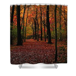 Shower Curtain featuring the photograph Fall Path by Raymond Salani III