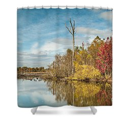 Shower Curtain featuring the photograph Fall Pond by Debbie Green