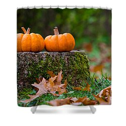 Fall Pumpkins Shower Curtain by Mike Ste Marie