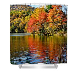 Fall Reflection Shower Curtain by Todd Hostetter