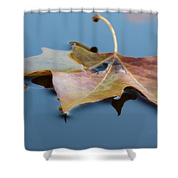 Fall Reflections Shower Curtain by Jane Ford