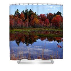 Fall Reflections Shower Curtain by Kerri Mortenson