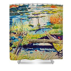 Fall River Scene Shower Curtain by Terry Holliday