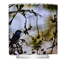 Fall Silhouette Shower Curtain