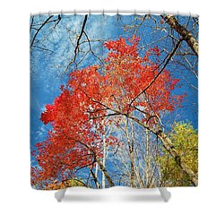 Fall Sky Shower Curtain