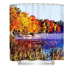 Shower Curtain featuring the photograph Fall Splendor Of Mid-michigan by Daniel Thompson