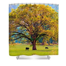 Fall Tree With Two Cows Shower Curtain by Michele Avanti