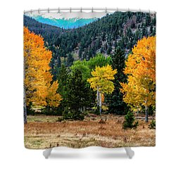 Fall Trees Shower Curtain by Juli Ellen